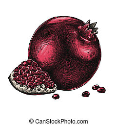 Engrave isolated pomegranate hand drawn graphic illustration...