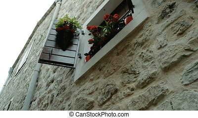 Pots of red flowers and plants are stood on the window. It...