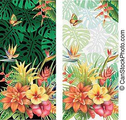 Cards from tropical flowers - Cards from tropical plants and...