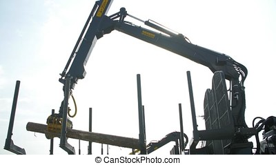 Heavy equipment loading with clipper cut logs. Large log loader and operations in the log yard at a conifer log