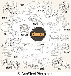 Hand drawn different types of cheese collection