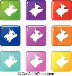 Pinscher dog icons 9 set - Pinscher dog icons of 9 color set...