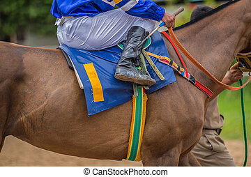 Racehorse - A Jockey Leads the Number one Horse to Start...