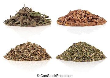 Medicinal and Magical Herbs - Medicinal herbs of balm of...