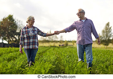 happy senior couple holding hands at summer farm - farming,...