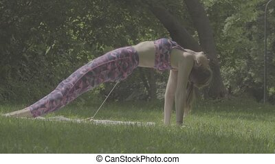 Young woman doing yoga exercises in the park. Akarna...