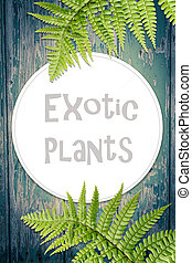 Fern leaves, artistic background with copy space