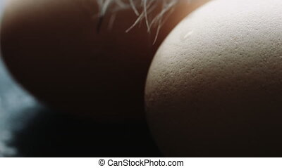 Chicken eggs are fresh, homemade and pen - The pen lays...