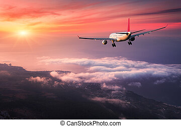 Landscape with big white passenger airplane is flying -...
