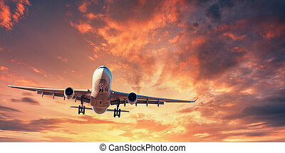 Landing airplane. Landscape with white passenger airplane is...
