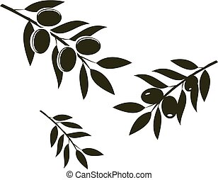 olives - vector olives branches