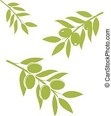 olives - vector green olives