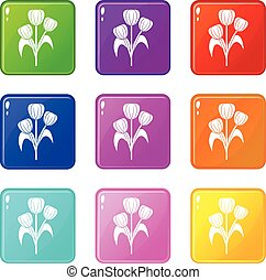Flowers icons 9 set