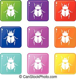 Scarab icons 9 set - Scarab icons of 9 color set isolated...