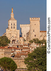 Avignon old downtown with Popes Palace in Provence, France