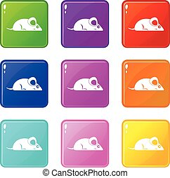 Pet mouse icons 9 set