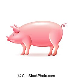 Pig side view isolated on white vector
