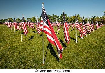 City park filled with American flags blowing in the wind