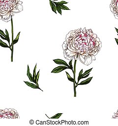 Seamless pattern with gently pink peony flower isolated on white background. Vector illustration.