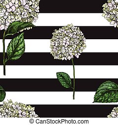 Seamless pattern with flowers of phlox on black and white...