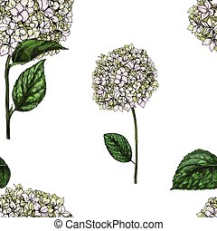 Seamless pattern with flowers of phlox isolated on white...