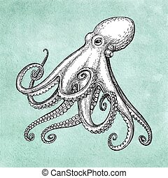 Octopus ink sketch on old paper background. Hand drawn...