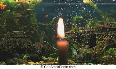 Burning candlelight on the background of aquarium - Burning...