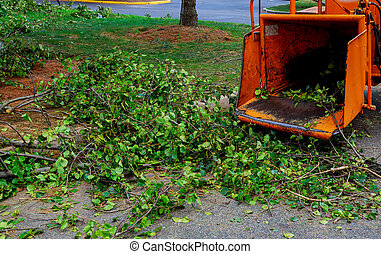 Landscapers using chipper machine to remove and haul chainsaw tree branches