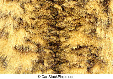 snow leopard textured pelt, real animal leather ( Panthera...