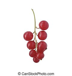 Berry red currant on a green branch