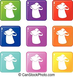 Boletus icons 9 set - Boletus icons of 9 color set isolated...