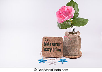 Beautiful  one pink rose  blooming with inspiration words Isolated  on a white background with clipping path.