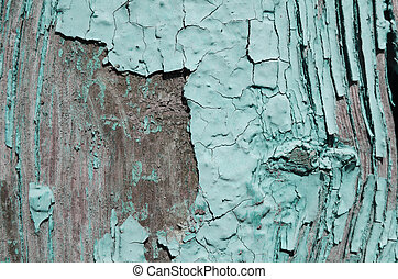 light blue paint peeled off the wood - Texture, light blue...