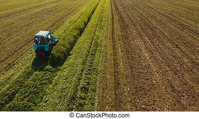 Tractor in the field mows the grass. - Tractor mowing green...