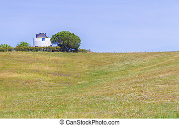 Windmill and Tree in the field in Vale Seco, Santiago do...
