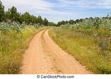 Farm road in Vale Seco, Cercal - Farm road in Cercal, Vale...