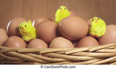 toy chickens sit between eggs