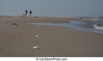 Unrecognizable people silhouettes walking on the beach, slow...