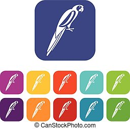 Parrot icons set vector illustration in flat style In colors...