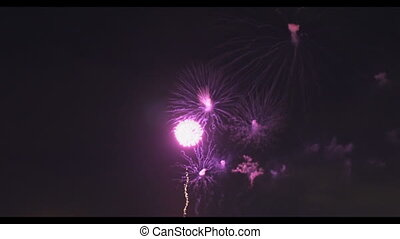 Amazing blue purple green celebration fireworks located right side over night sky, Independence Day