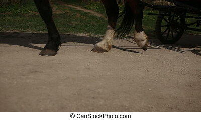 Hooves and wagon wheels HD