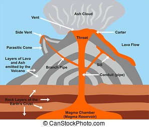 Volcano Cross Section Diagram including all parts magma...