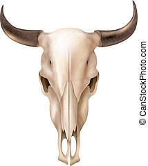 Realistic Cow Skull - Realistic cow skull with stains and...