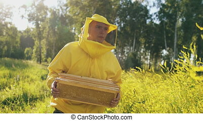 Steadicam shot of beekeeper man with wooden frame walking in blossom field while working in apiary