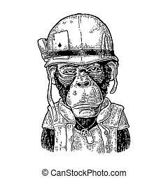 Monkey in soldier helmet with glasses. Vintage black engraving