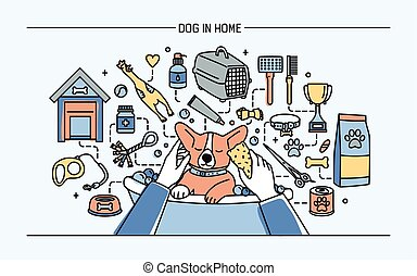 Dog in home horizontal banner with pet toys, meds and puppy...