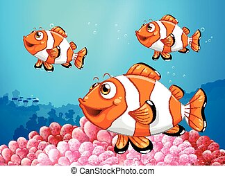Three clownfish under the ocean illustration