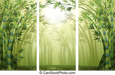 Bamboo forest scenes with mist illustration