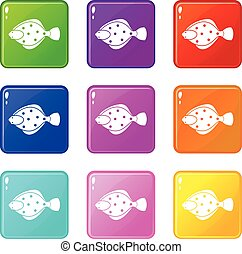 Flounder fish icons 9 set - Flounder fish icons of 9 color...