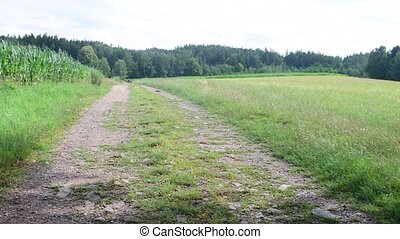 Pan view of country path and landscape